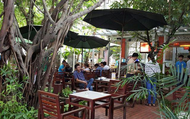 Nemo Cafe - Cafe Sân Vườn
