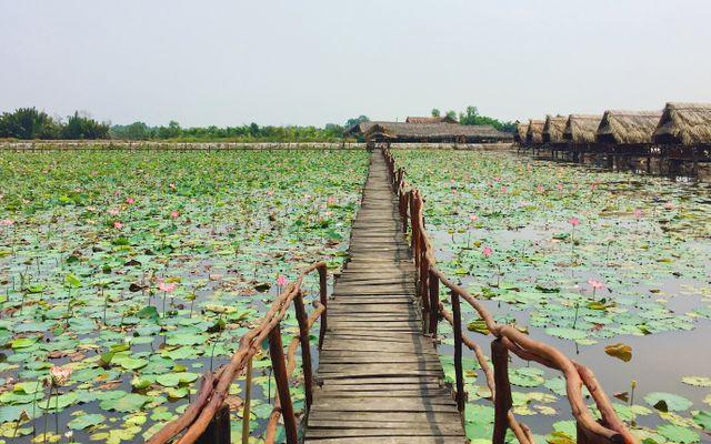 Hồ Nhà - Câu Cá Giải Trí & Ẩm Thực Đồng Quê