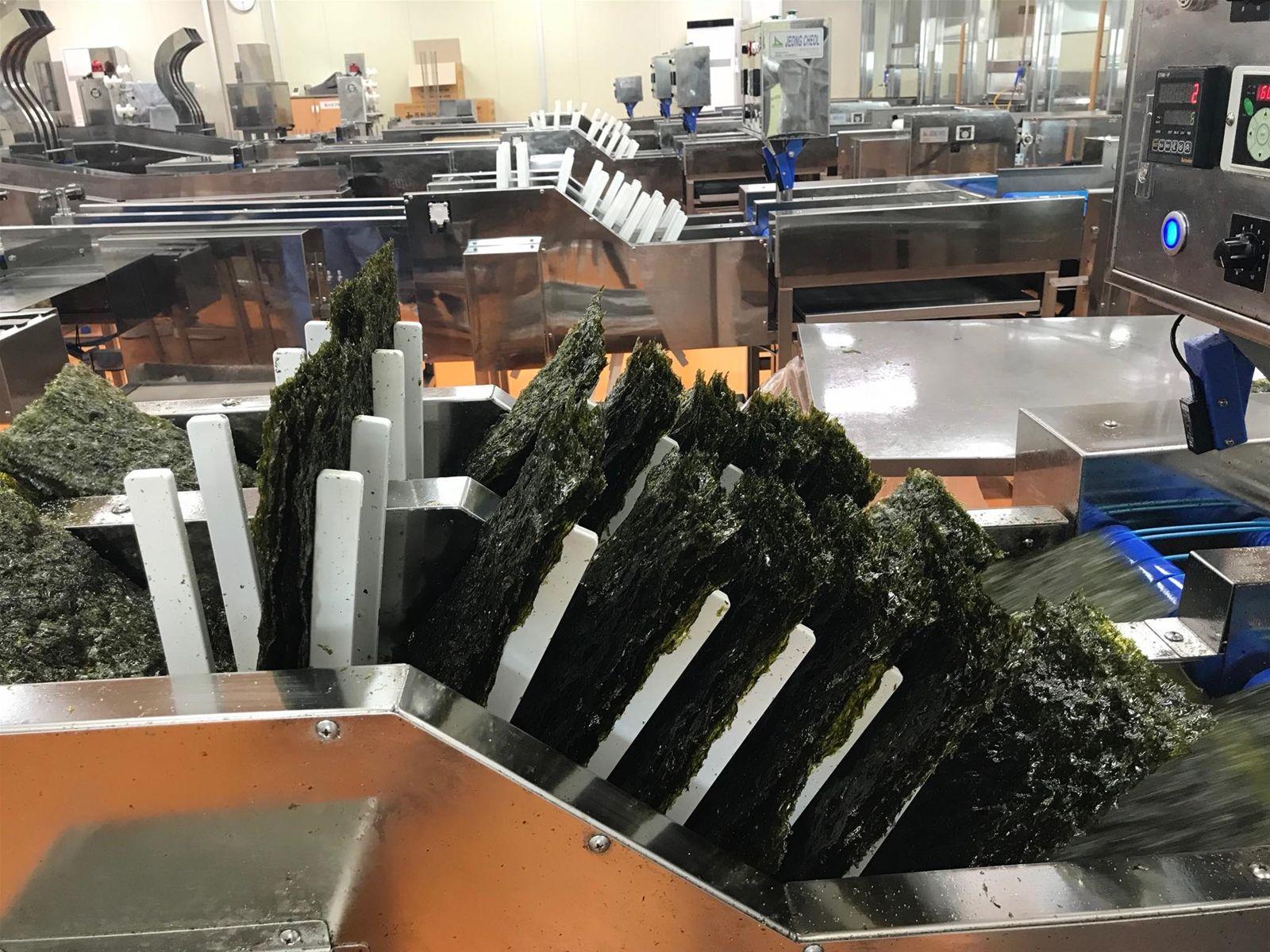 Trong 1 năm trở lại đây, các cơ sở sản xuất lá kim Hàn Quốc đã cho ra mắt những sản phẩm được chế biến từ lá kim với hình thức và ...