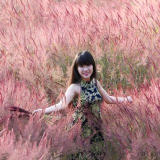 (HCM) Hot Trend - Đi Đà Lạt đầu Đông ngắm đồi cỏ Hồng