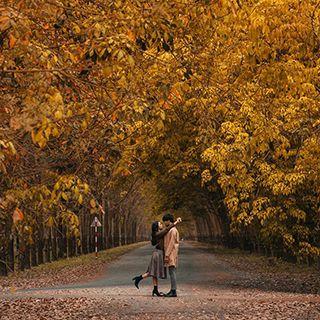 Lãng mạn như MÙA THU HÀN QUỐC ở rừng cao su ngay BD