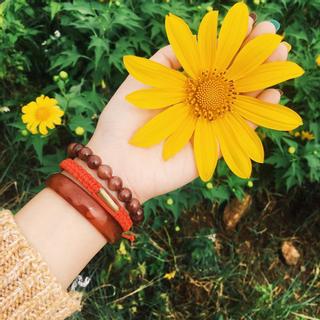 Về Gia Lai ngắm hoa dã quỳ dưới chân núi lửa Chư Đăng Ya