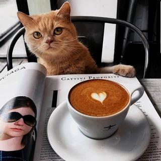(CT) TẬN HƯỞNG CAFE CHUẨN Ý với 5 địa chỉ đáng đến ở Cần Thơ