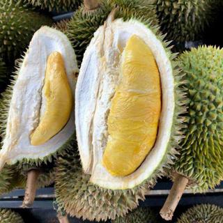Hiếm có khó tìm các điểm ăn sầu riêng giá chỉ từ 29k/ kg ở SG
