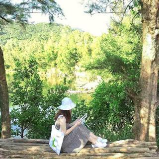 Dân tình sục sôi một Đà Lạt thu nhỏ so deep đẹp bung trời ở Đà Nẵng