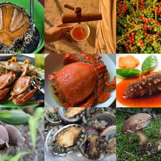 (PQ) Mê Mẩn 9 Loại Đặc Sản Nổi Tiếng Chỉ Có Ở Đảo Ngọc Phú Quốc