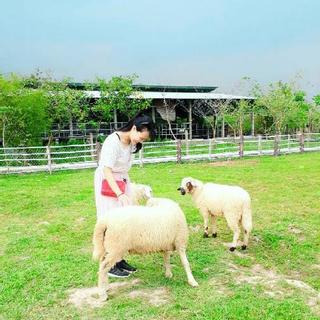 Rủ nhau đến 6 nông trại xanh mát ngay Sài Gòn dịp lễ