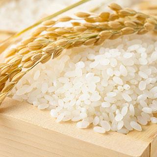 """Gạo Hokkaido """"chiếm sóng"""" tại ba nhà hàng Nhật nổi tiếng tại Sài Gòn"""