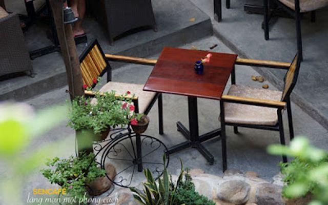 Sen Cafe - Nguyễn Huy Tưởng