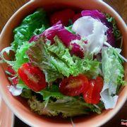 Insalation misto salad minisize 98k++