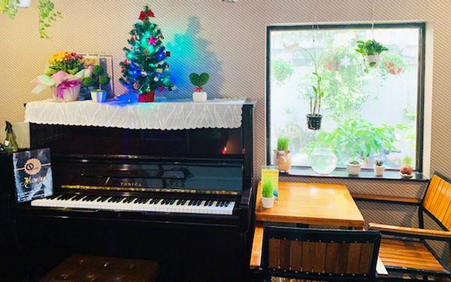 Q Cafe & Studio