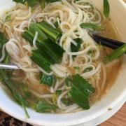 Yummy fresh rice noodle. Pho ga