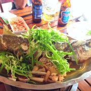 Cá chẽm hấp Hồng Kong