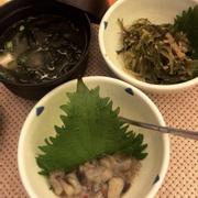 Soup miso - Rong biển trộn mè - Bạch tuột trộn mù tạt