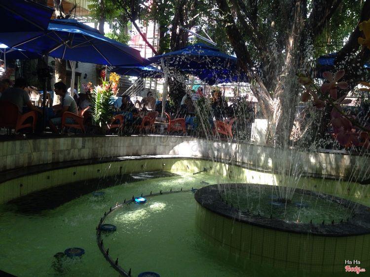 Trúc Nguyên Cafe ở Đồng Nai