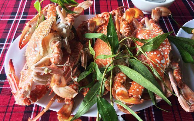 Bè Hào Long Sơn
