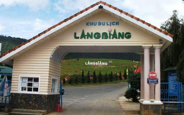 Mimosa - LangBiang