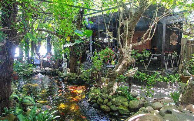 Amazon Cafe - Đảo Xanh