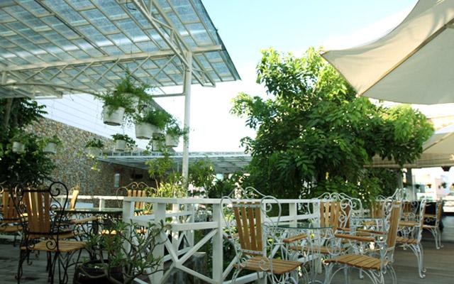 Newlink Cafe