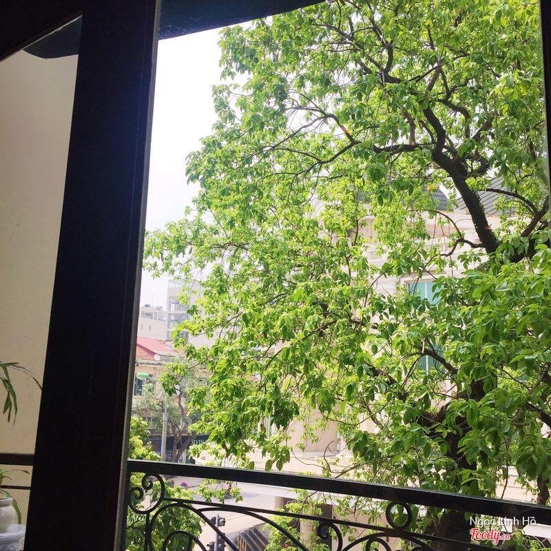 View from window, 3rd floor