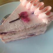 Sakura shortcake