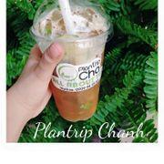 Trà Plantrip Chanh