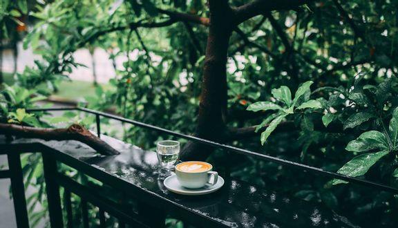 Thiên Hạt Specialty Coffee