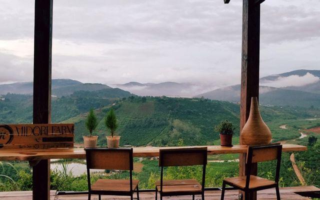 Midori Cafe & Farmstay Dalat