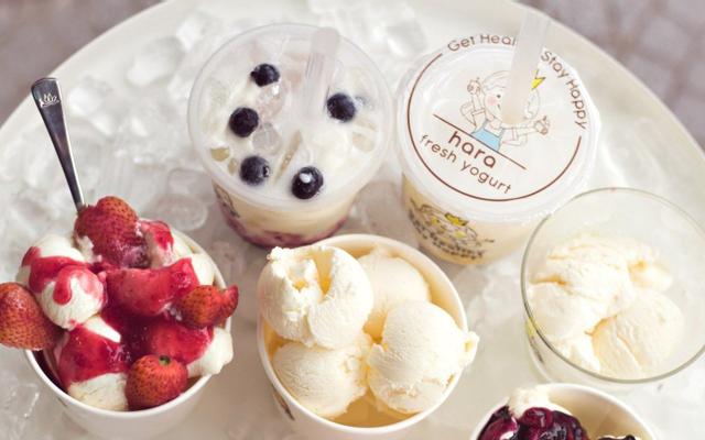 Tiệm Sữa Chua Hara - Nhật Lệ
