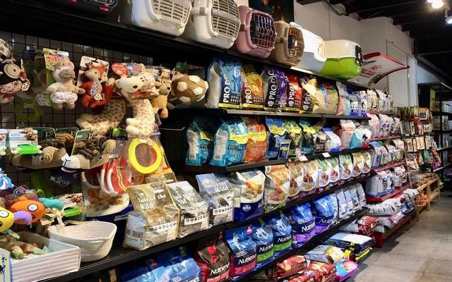 Wind Fin Pet Shop - Hoa Sứ