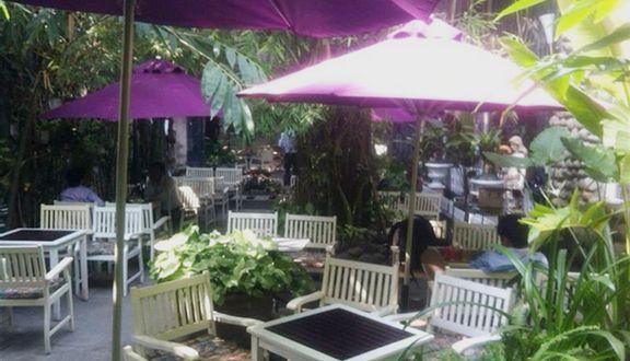 Bằng Lăng Tím Cafe - Phan Huy Ích