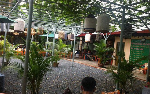 Song Huy - CLB Cafe Chim Cảnh