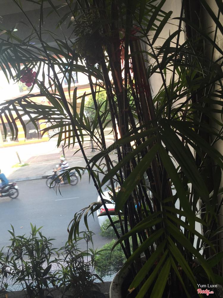 Hạnh Phúc Hotel ở TP. HCM