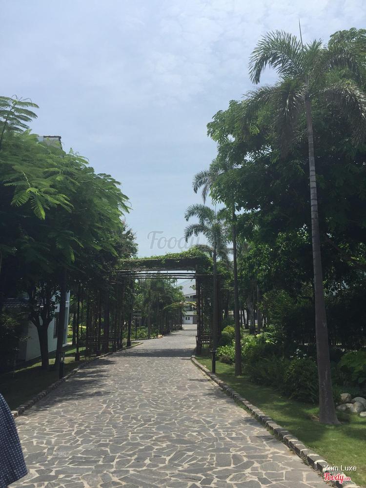 Carmelina Beach Resort ở Vũng Tàu