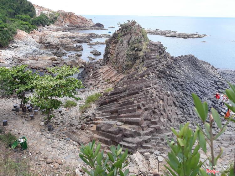 Gành Đá Đĩa - Xã An Ninh Đông ở Phú Yên