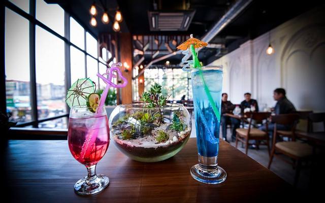 Venice Coffee & Bar - Lạch Tray