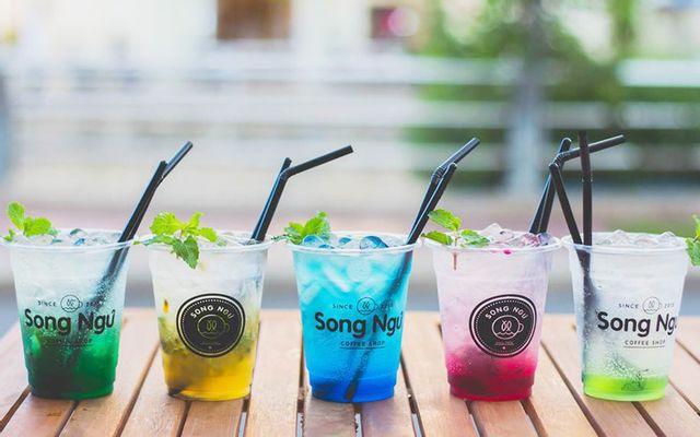 Song Ngư Coffee Shop - Nguyễn Việt Hồng