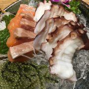 Sashimi cá hồi, bạch tuộc