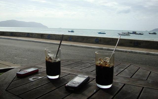 Cây Dừa Cafe - Ghế Bố - Chùa Tàu