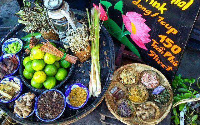 Mót Hội An - Trà Thảo Mộc & Sả Chanh