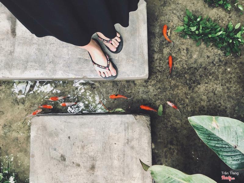 Lối vào có mấy chú cá nhỏ khá xinh, nhưng các bạn nhớ bước đi cẩn thận nha =))