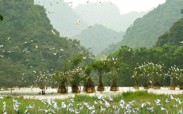 Địa điểm Ăn uống tại Gia Viễn, Gia Vân, Ninh Bình | Foody.vn