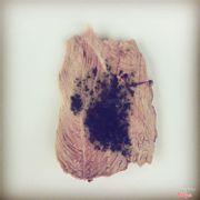 Món thịt cừu sốt bạc hà