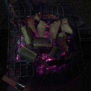 Thịt xông khói, cơm lam 2 người