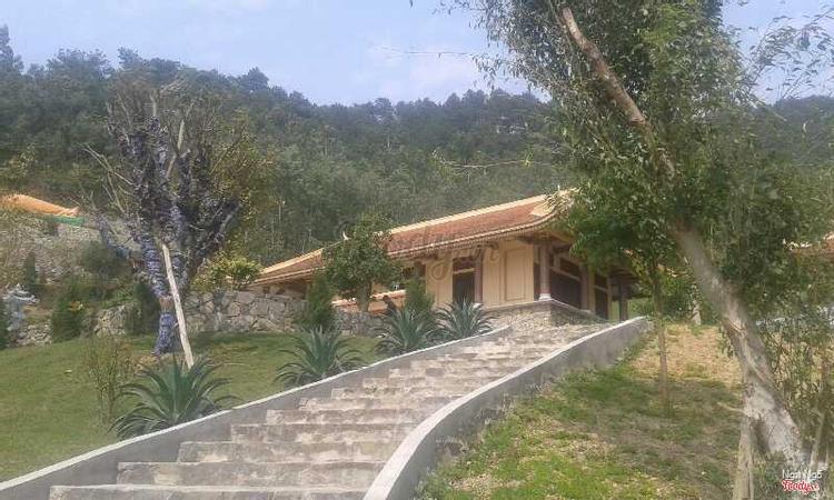 Thiền Viện Trúc Lâm An Tâm - Tam Đảo ở Vĩnh Phúc