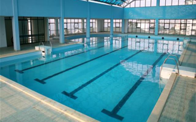Bể Bơi Trường Hà Nội Amsterdam - Hoàng Minh Giám