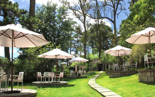 Zen Cafe & Villa - Phạm Hồng Thái