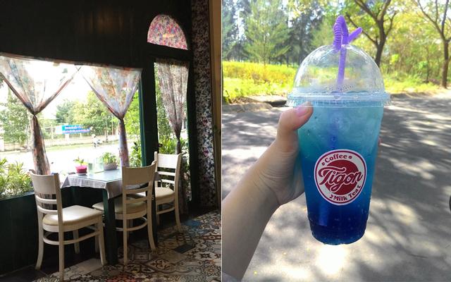 Tigôn Cafe - Đường A3