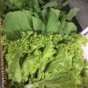 Đây là rổ rau với đầy đủ các loại: xà lách, cải xanh, diếp cá, rau sống, quế, đọt cóc, lá lốt, lá cách, lá vị, tía tô, rau nhái...