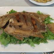 Nhà hàng Khách sạn Fita Cao Su